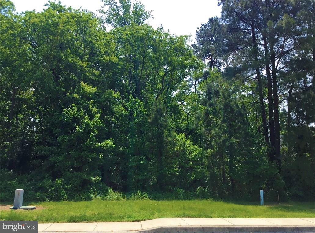152 W Shore Dr #18   - Best of Northern Virginia Real Estate